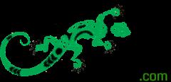 Iguana Hut